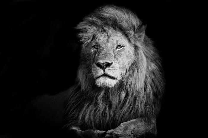 Die Höhle Der Löwen Folge 9 Vom Futuristischen Fortbewegungsgerät